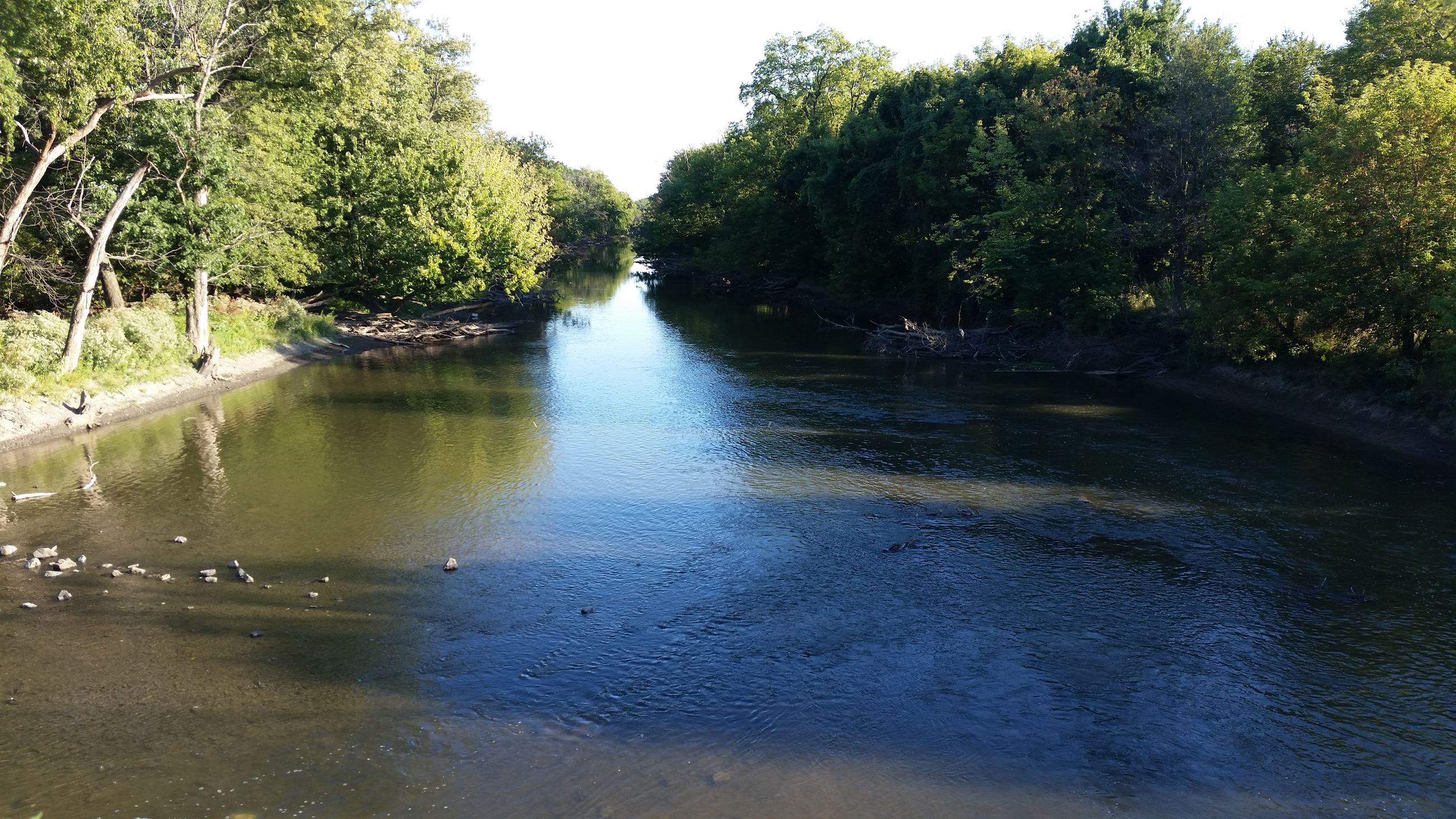 Standing above the Des Plaines River as it gently flows away between the tree lined banks